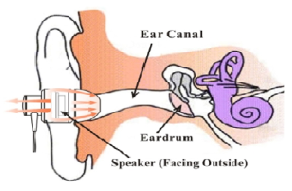 Ear Canal Diagram