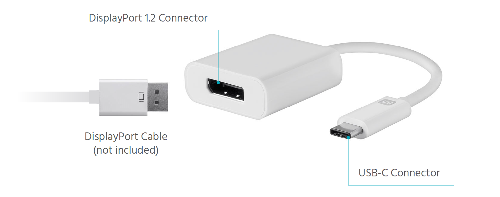 USB-C to DisplayPort Adapter