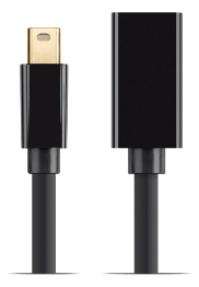 Mini DisplayPort 1.2 Extension