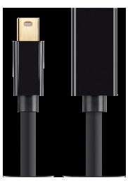 Mini DisplayPort 1.2 Extension