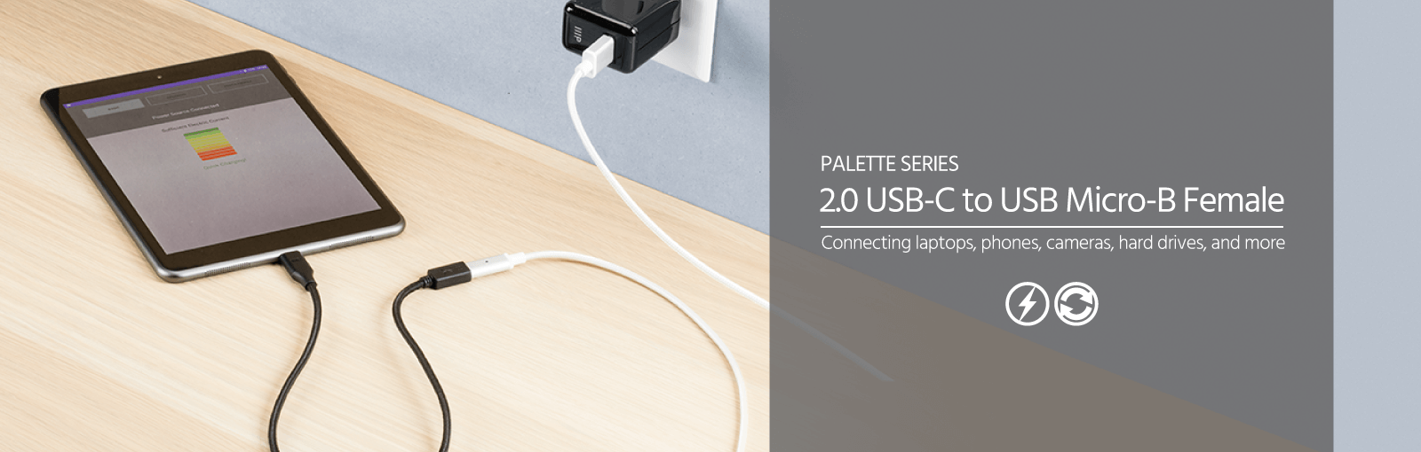 Palette Series 2.0 USB-C to Micro B (F)