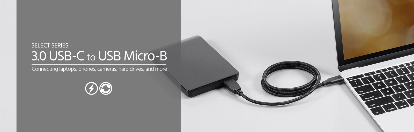 Palette Series USB 2.0 C to Micro B