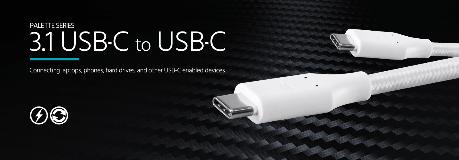 3.1 USB-C to USB-C with Power Delivery