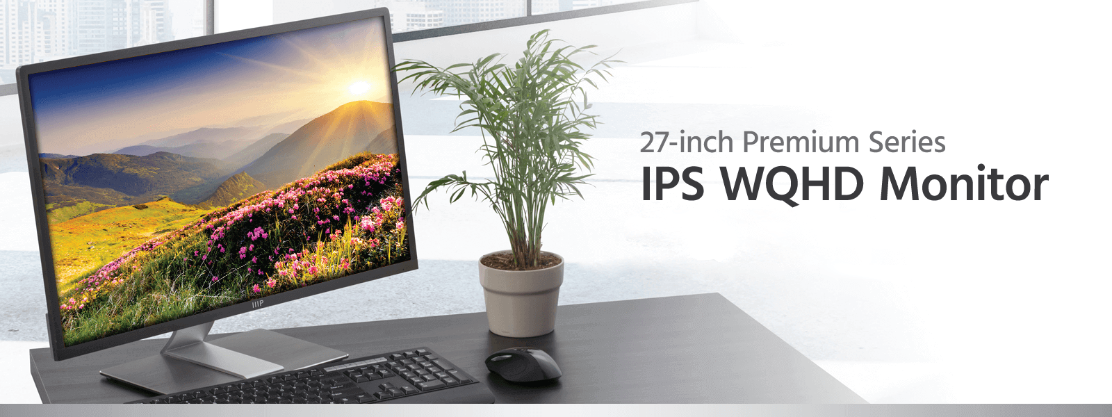 27-inch IPS Display