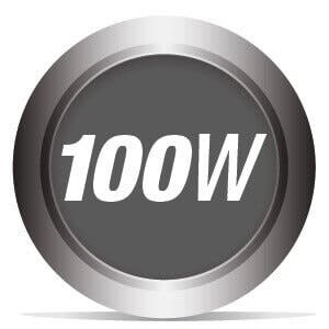 100 Watts Power Delivery